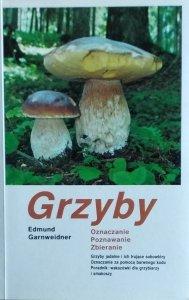 Edmund Garnweidner • Grzyby