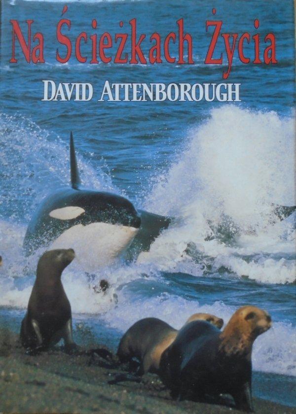 David Attenborough • Na ścieżkach życia. Historia naturalna zachowań zwierzęcych