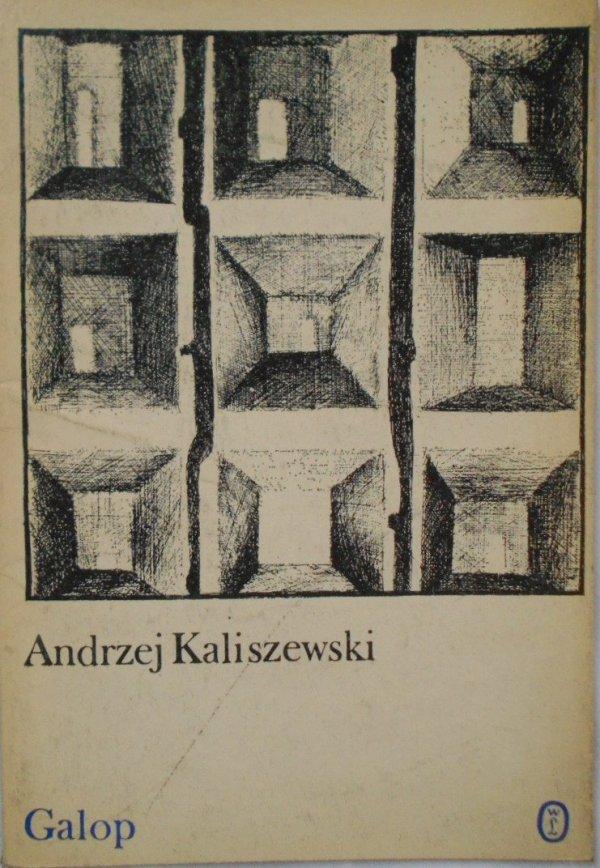 Andrzej Kaliszewski • Galop [dedykacja autora]