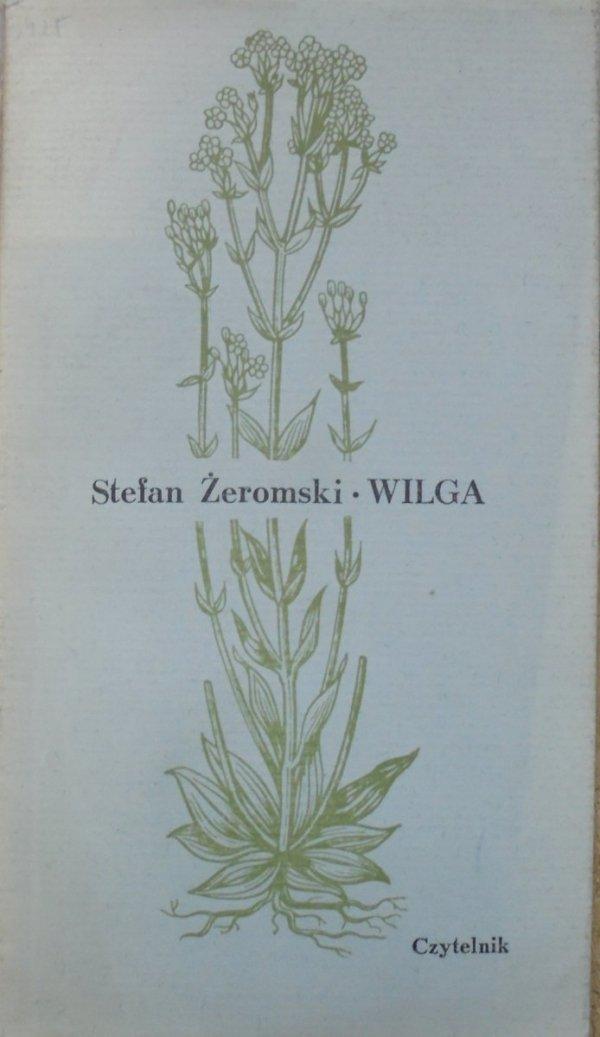 Stefan Żeromski • Wilga