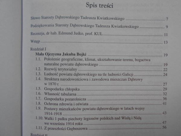Andrzej Skowron • Problemy krajowe i lokalne w publicznej działalności Jakuba Bojki