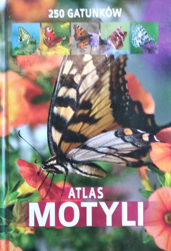 Jacek Twardowski Kamila Twardowska • Atlas motyli 250 gatunków
