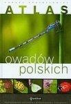 Atlas owadów polskich