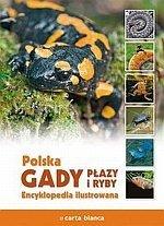 Polska Gady płazy i ryby Encyklopedia ilustrowana