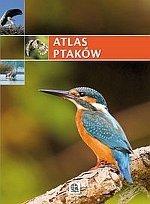 Atlas ptaków Imagine