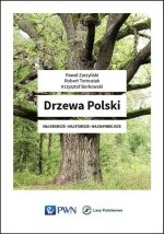 Drzewa Polski Najgrubsze Najstarsze Najsłynniejsze