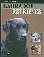 Labrador Retriever /REA