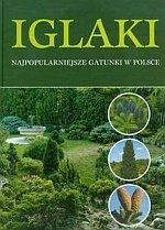 Iglaki najpopularniejsze gatunki w Polsce
