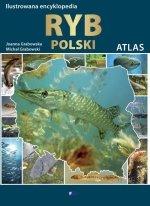 Ilustrowana encyklopedia ryb