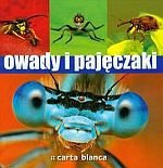 Owady i pajęczaki