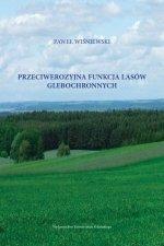 Przeciwerozyjna funkcja lasów glebochronnych