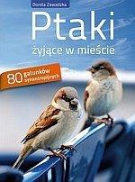 Ptaki żyjące w mieście 80 gatunków synantropijnych