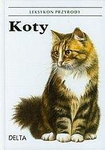 Koty Leksykon przyrody