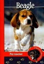 Beagle Psy rasowe