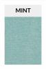 TI005 mint