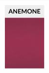 rajstopy BOOGIE - anemone