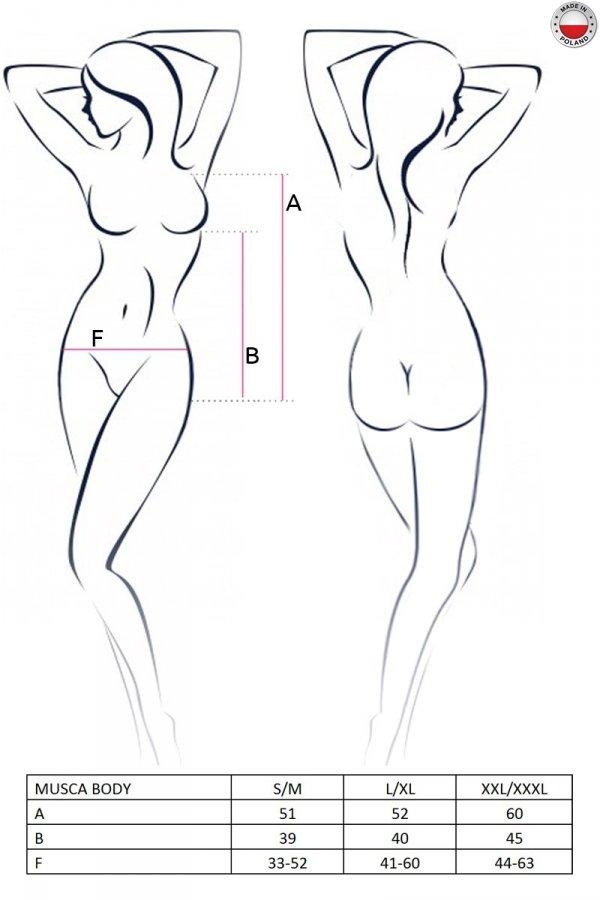 MUSCA BODY
