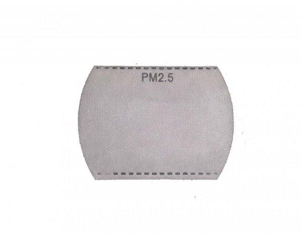 Filtr PM 2.5