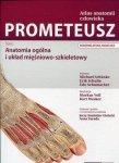 Atlas anatomii człowieka PROMETEUSZ Tom 1 Anatomia ogólna i układ mięśniowo-szkieletowy Nomenklatura angielska