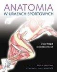 Anatomia w urazach sportowych
