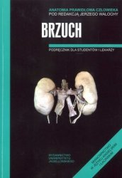 Brzuch Anatomia prawidłowa człowieka Podręcznik dla studentów i lekarzy