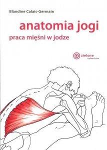 Anatomia jogi praca mięśni w jodze