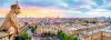 TREFL Puzzle 1000 el. PANORAMA Widok z katedry Notre-Dame (29029)