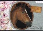 Blok rysunkowy A4 STRAPAK Konie HORSES (299163)