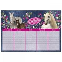 Plan lekcji I love horses Koń (PLNKO)