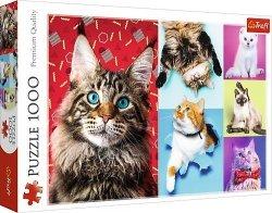 TREFL Puzzle 1000 el. Wesołe koty (10591)