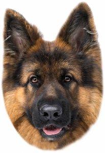 Poduszka kształtka OWCZAREK wilczur pies (KSZ183001)