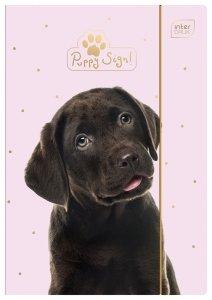 Teczka rysunkowa A4 z gumką PIESEK Puppy Sign (15406)