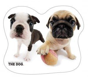 Welurowa poduszka kształtowa THE DOG Piesek Pieski (DOG03)