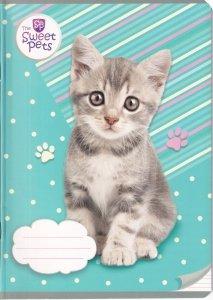Zeszyt A5 w kolorową linię 16 kartek THE SWEET PETS Kotek (94920)