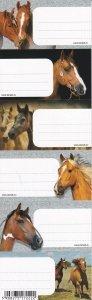 Nalepki naklejki na zeszyty STARPAK Horses KONIE 6 sztuk mix (298976)