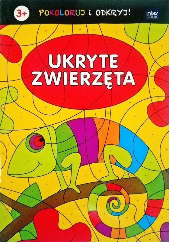 Kolorowanka pokoloruj i odkryj UKRYTE ZWIERZĘTA (56119)