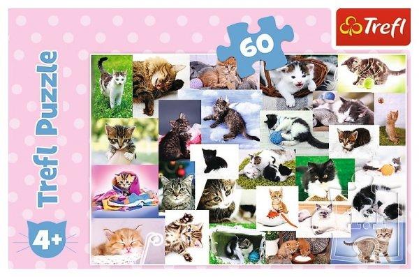 TREFL Puzzle 60 el. CATS, Koci świat (17332)