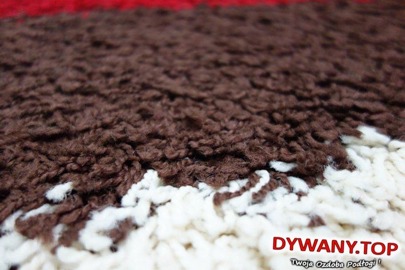 COZZY PAOLA czekolada chocolate