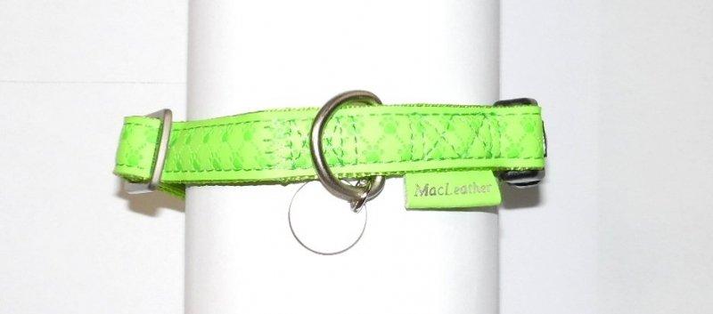 Obroza regulowana Mac Leather 15mm seledynowa