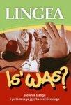 Is' Was? słownik slangu i potocznego języka niemieckiego