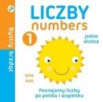 Liczby/numbers. Bystry brzdąc