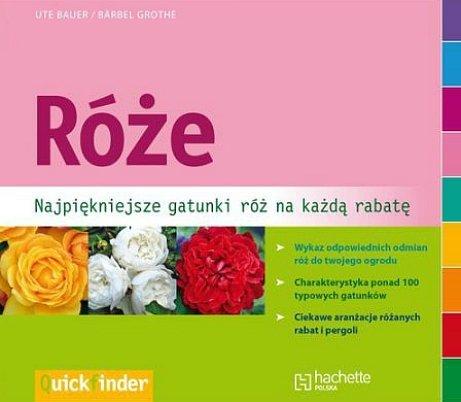 Róże. Najpiękniejsze gatunki róż na każdą rabatę