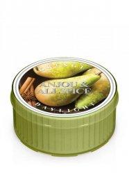 Kringle Candle - Anjou & Allspice - Świeczka zapachowa - Daylight (35g)