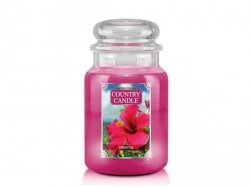 Country Candle - Hibiscus - Duży słoik (680g) 2 knoty