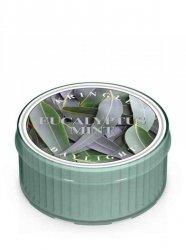 Kringle Candle - Eucalyptus Mint - Świeczka zapachowa - Daylight (35g)