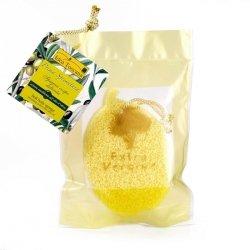 Gąbka do mycia ciała nasączona oliwą z oliwek - Idea Toscana