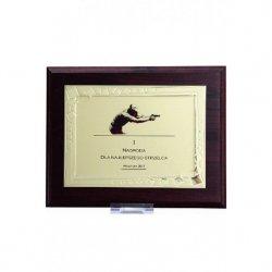 Dyplom Z Tworzywa Sztucznego Z Metalową Blaszką Grawerowany