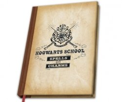 HARRY POTTER  - Notes Hogwart