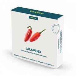 Tregren Jalapeno, 1 seed pod, SEEDPOD97