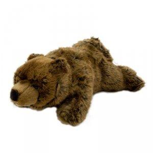 Dante Pacynka Niedzwiedź Grizzly National Geographic